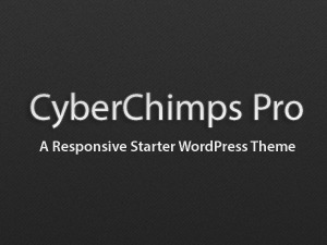 CyberChimps Pro Starter Theme WordPress template
