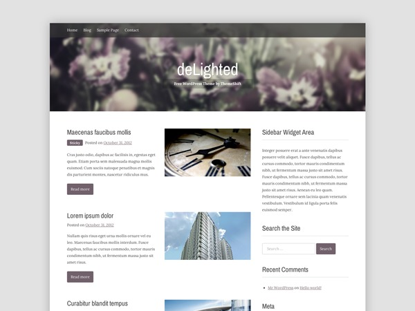 deLighted WordPress blog theme