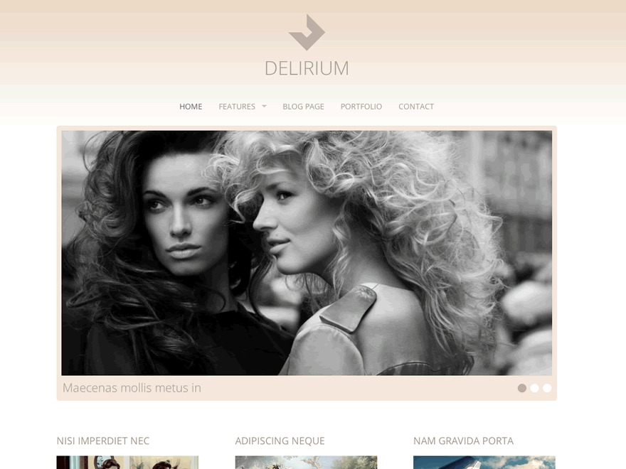 Delirium WordPress template for business
