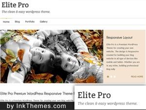Elite Pro Responsive Theme business WordPress theme