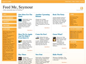 Feed Me, Seymour WordPress magazine theme