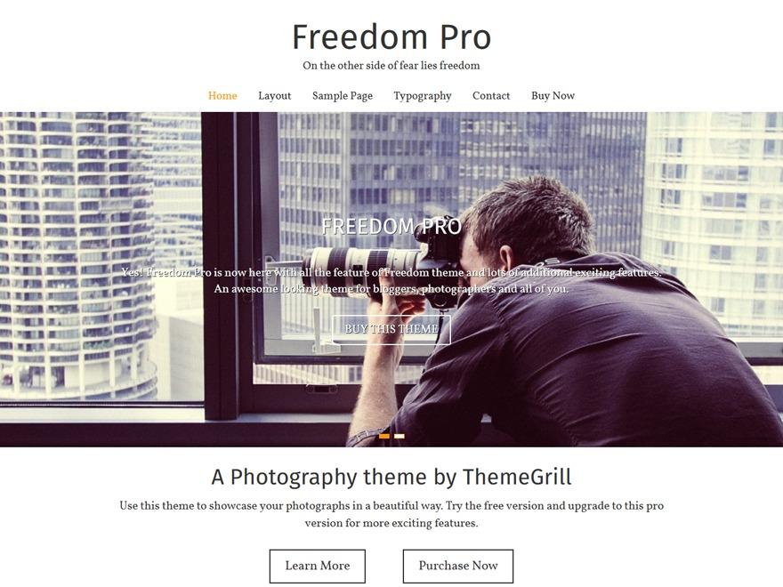 Freedom Pro top WordPress theme