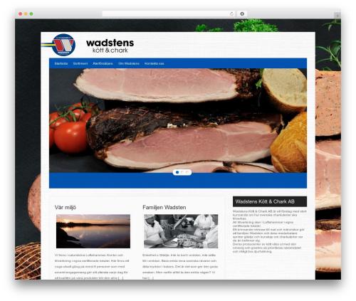 Hector best WordPress theme - wadstenschark.se