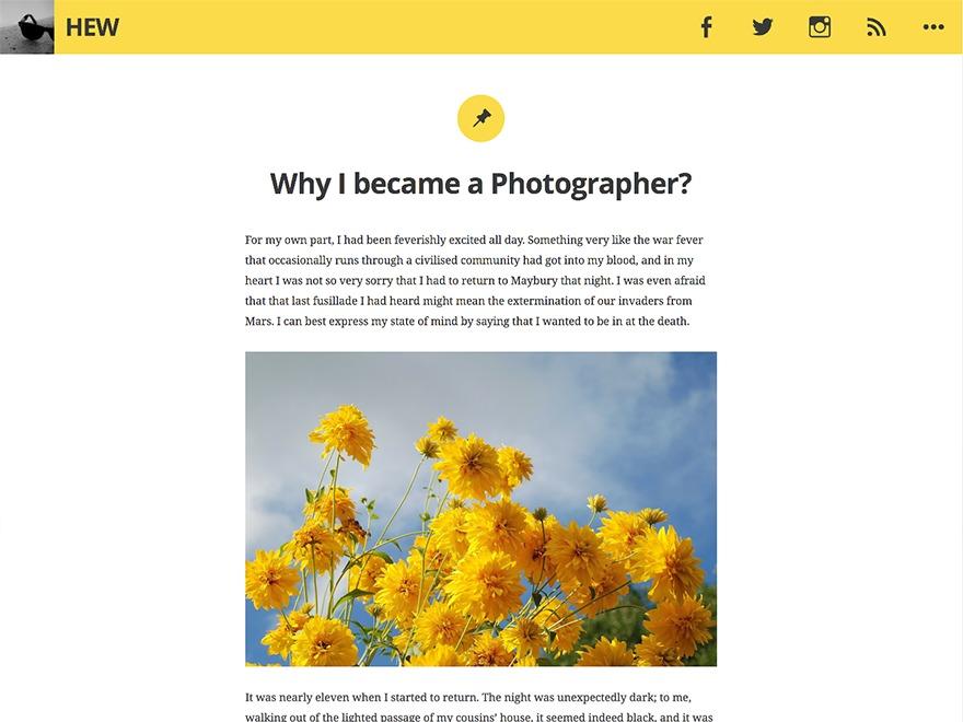 Hew WordPress template free download