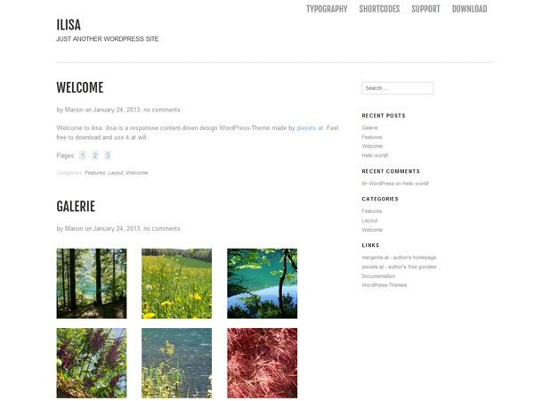 Ilisa WordPress template for business