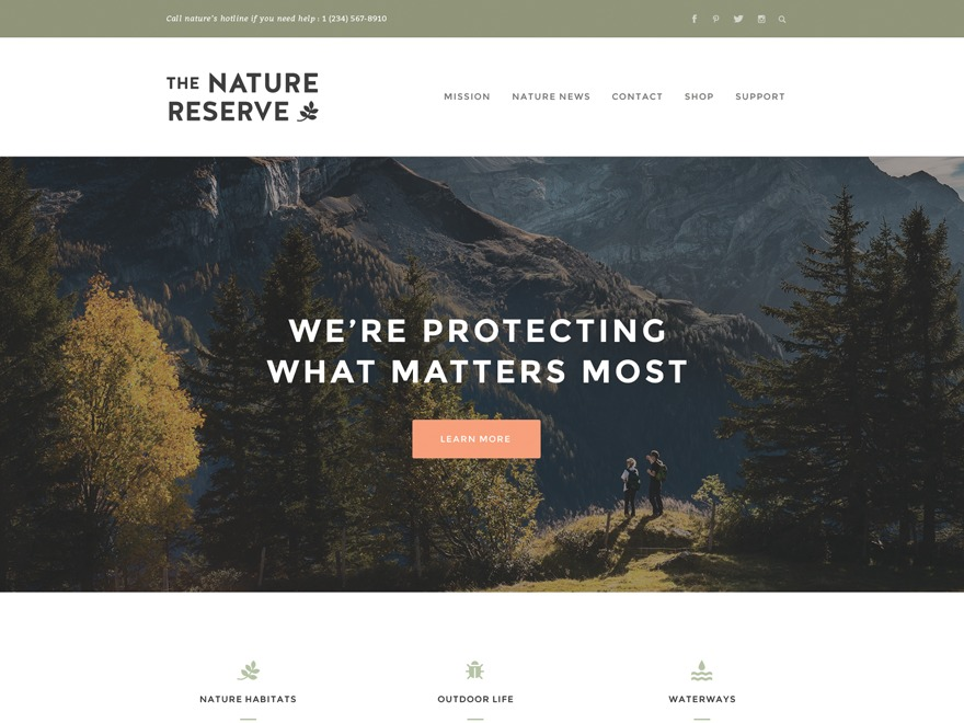Naturelle business WordPress theme