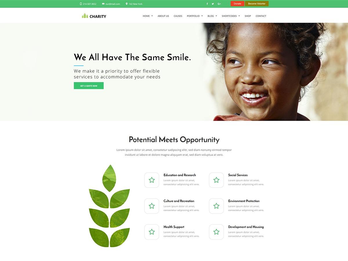 Nonprofit WP template