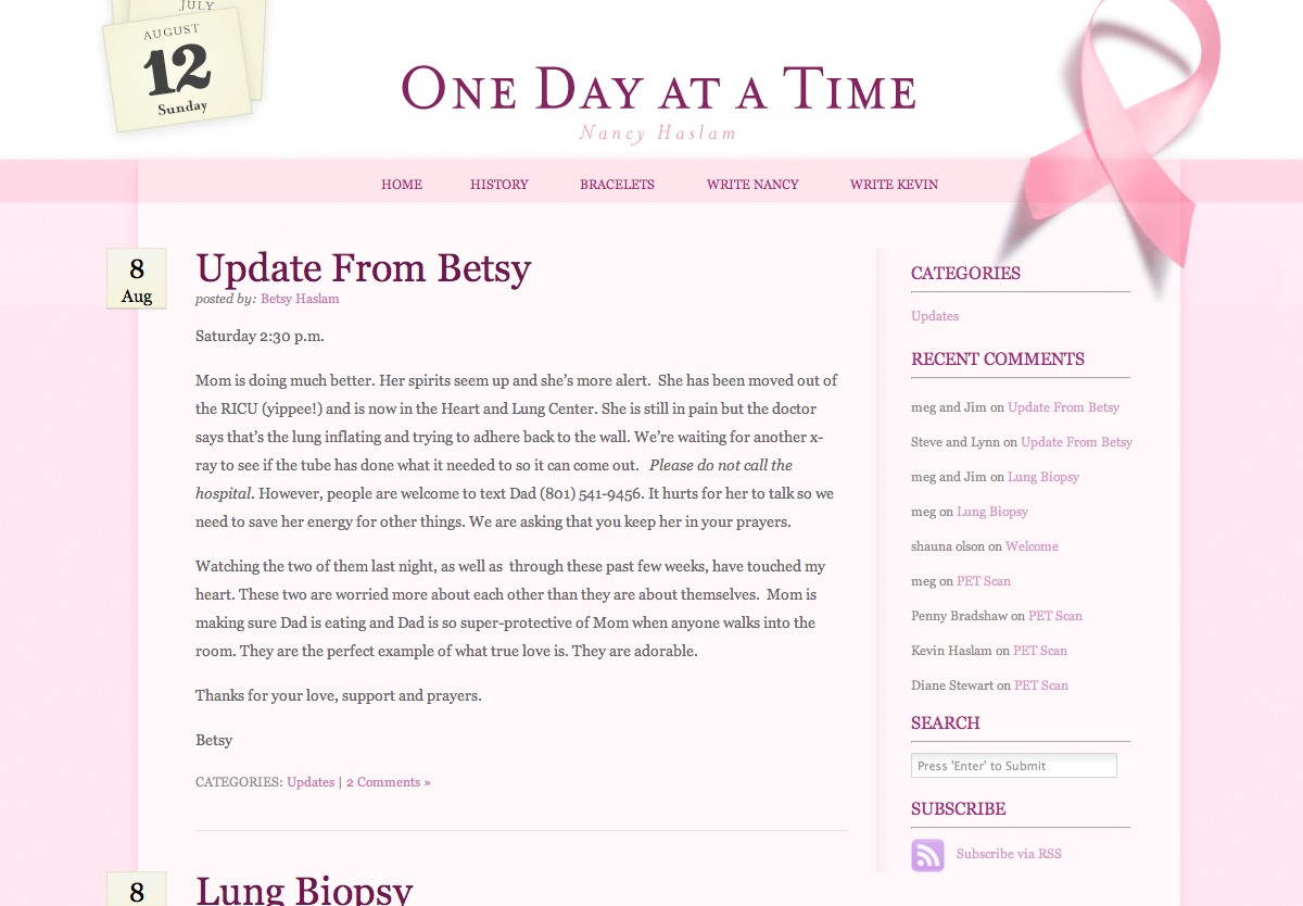 One Day at a Time premium WordPress theme