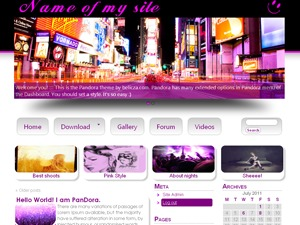 pandora WordPress blog template