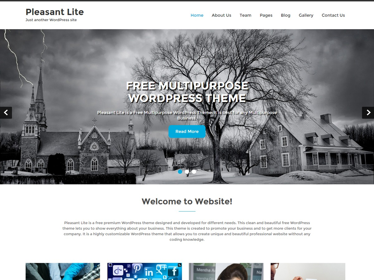 Pleasant Lite best free WordPress theme