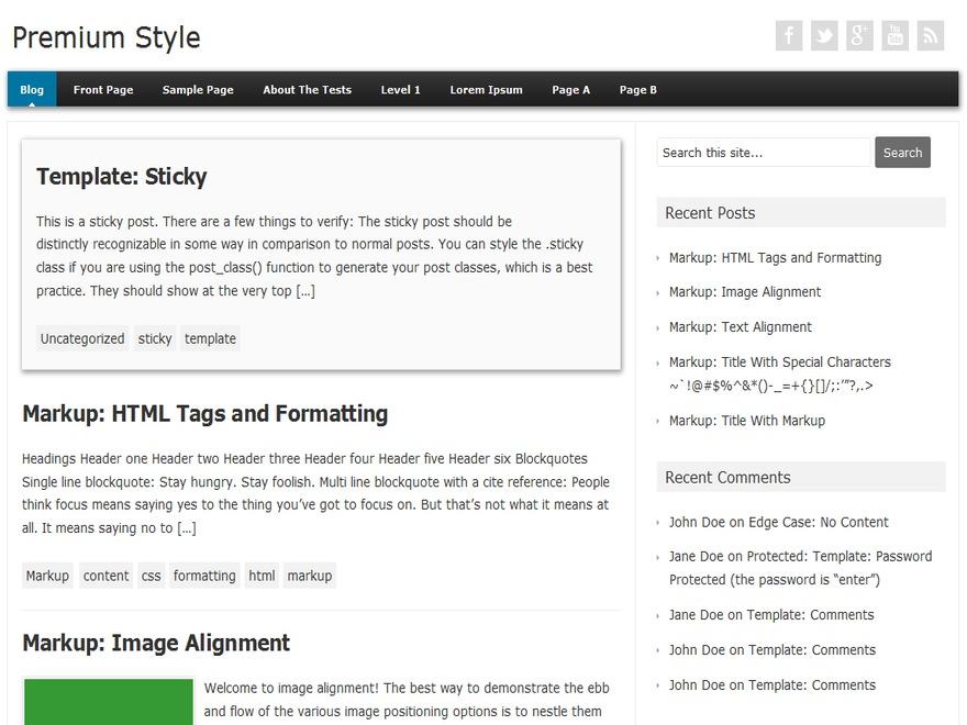 Premium Style WordPress blog theme