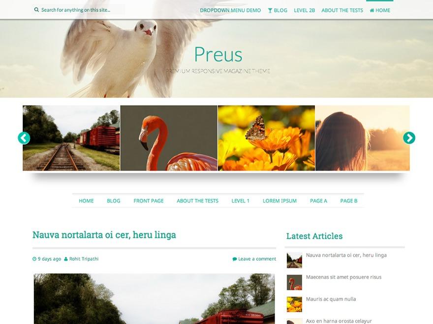 Preus free WP theme