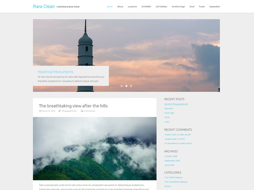 Rara Clean WordPress free download