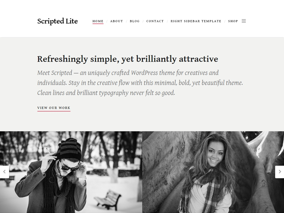 Scripted free WP theme