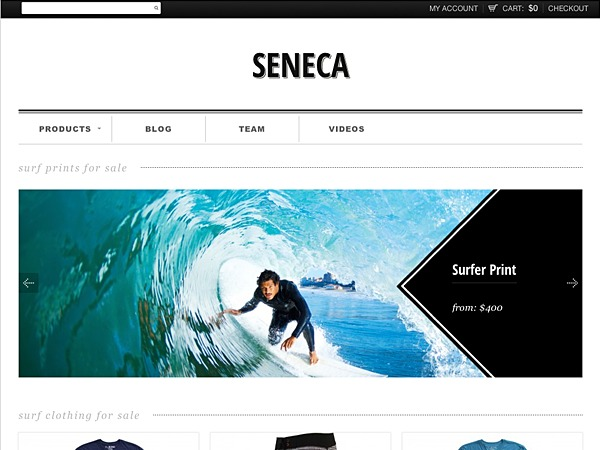 Seneca WordPress website template