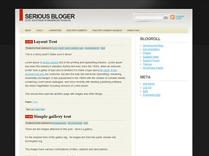 Serious Blogger WordPress blog template