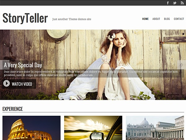 Storyteller WordPress movie theme