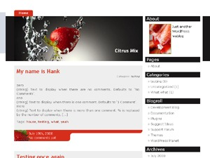 Strawberry Blend premium WordPress theme