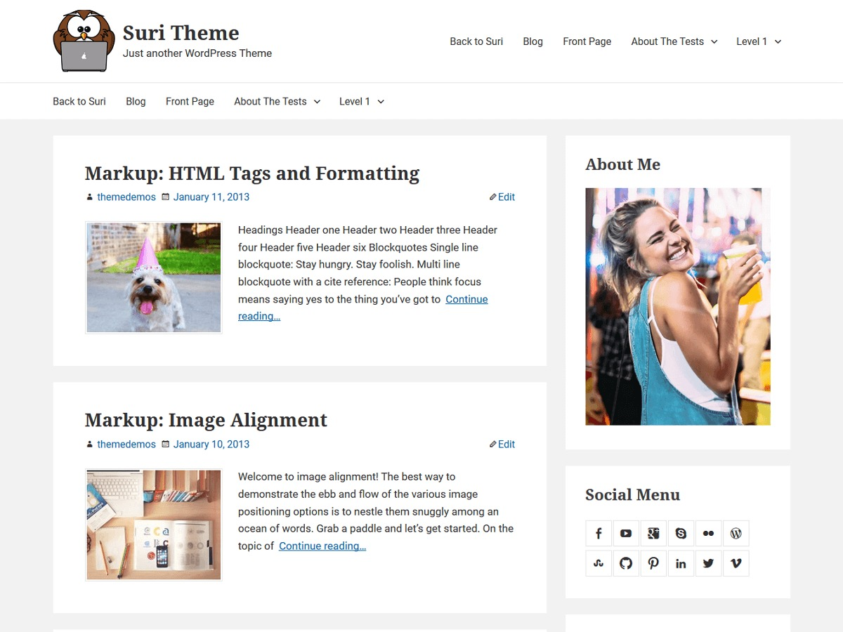 Suri WordPress theme free download