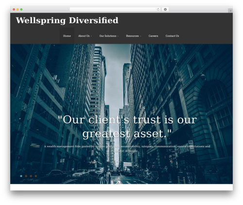 Theme WordPress Asteria PRO - wellspringdiversified.com