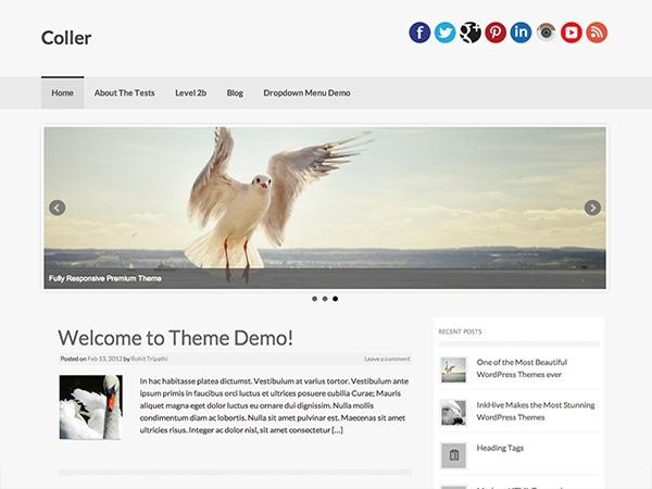 Theme WordPress Coller Pro