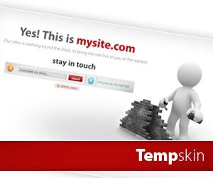 Theme WordPress Tempskin