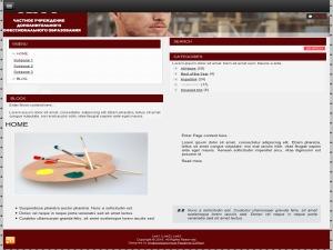 Theme WordPress tsg