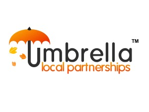 Umbrella V4 best WordPress template