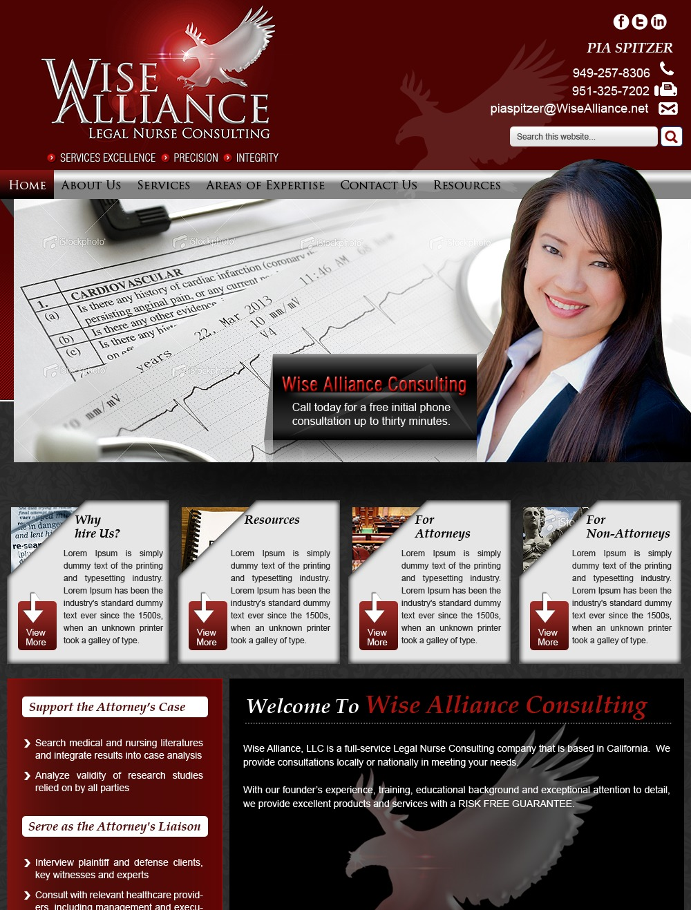 Wise Alliance Consulting top WordPress theme