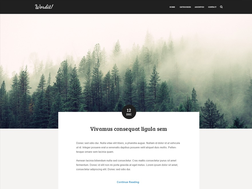 Wordit WP template