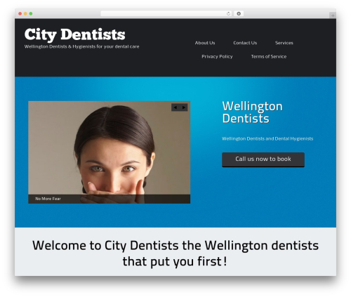 WordPress theme ThemeAlley.Business - wellingtondentists.co.nz