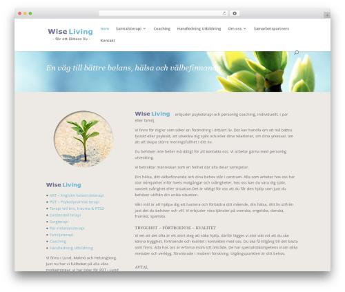 WordPress website template Divi - wiseliving.se