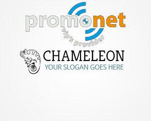 WordPress template Chameleon