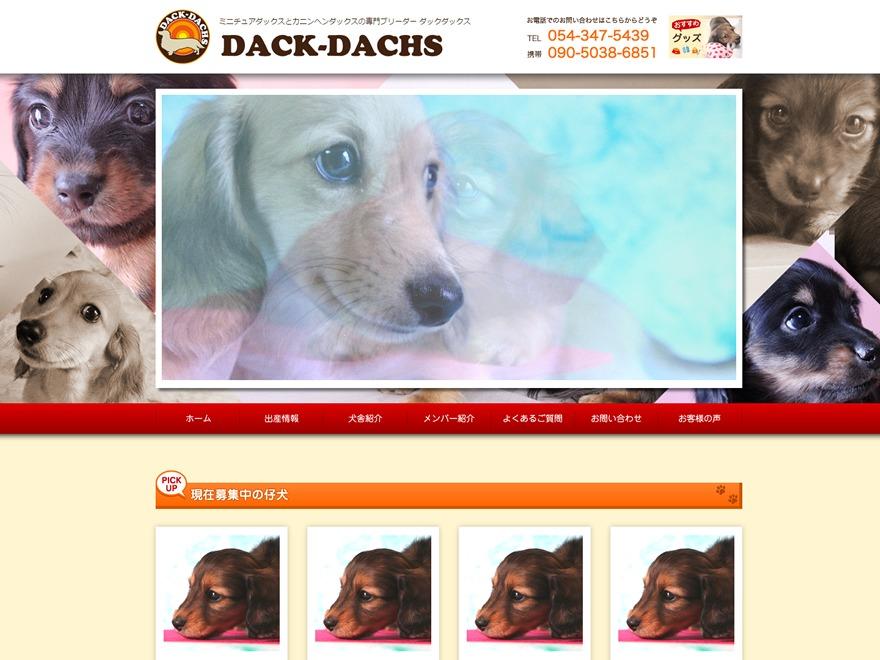 dack-dachs business WordPress theme
