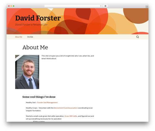 Twenty Thirteen theme WordPress - davidforster.me