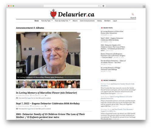 Stargazer WP template - delaurier.ca