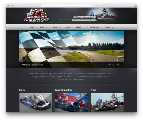 Best WordPress template Radial Premium Theme - karting.cc