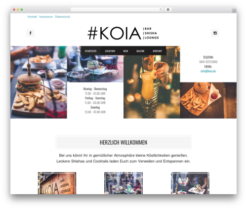 Grill best WordPress theme - koia.de