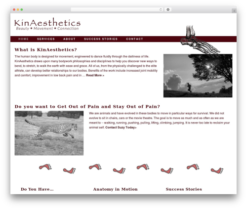 Free WordPress WP Accessibility plugin - kinaestheticsstudio.com