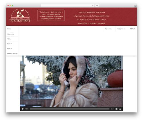 Fruitful WordPress theme free download - kromanion.ru