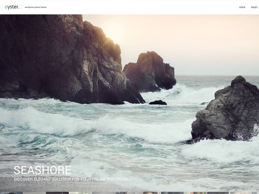 Oyster WordPress template for photographers