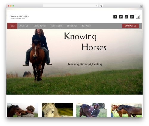 WordPress social plugin - knowinghorses.com
