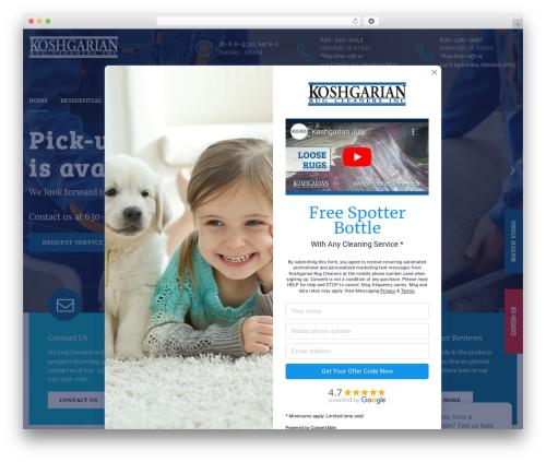 WordPress template Medicare - koshgarianrugcleaners.com