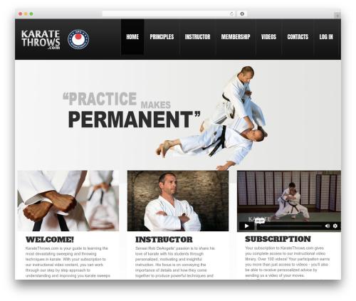 Free WordPress Theme My Login plugin - karatethrows.com