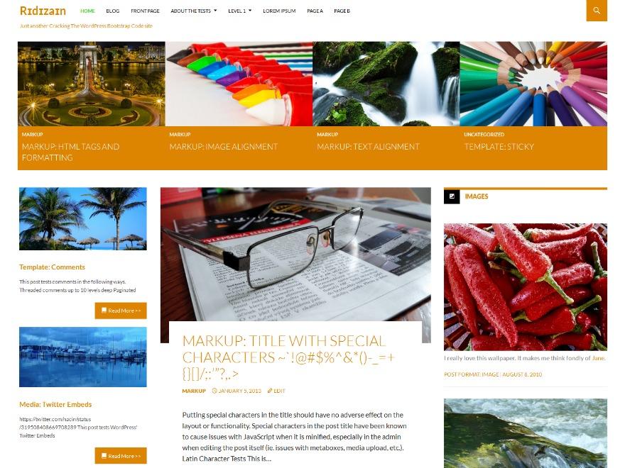 ridizain child WordPress theme design
