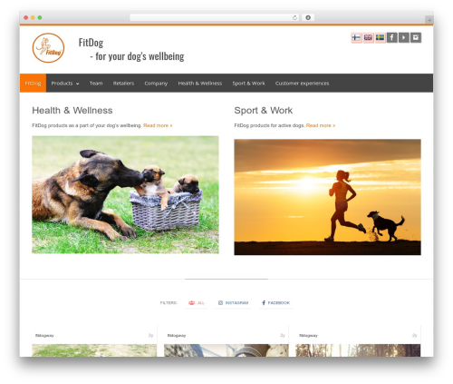 Theme WordPress Clockwork WP - fitdog.fi
