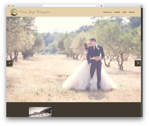 WordPress theme Salient - fabienbapt-photographie.com