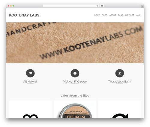 Pinnacle template WordPress - kootenaylabs.com