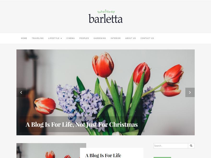 Best WordPress theme Barletta Child