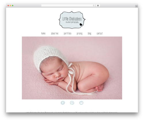 ProPhoto WordPress website template - littlechickadeesphotography.ca